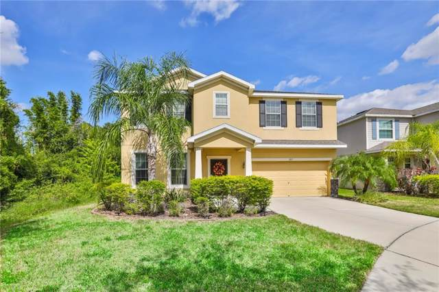 302 Corbett Bluff Drive, Ruskin, FL 33570 (MLS #T3205473) :: Carmena and Associates Realty Group
