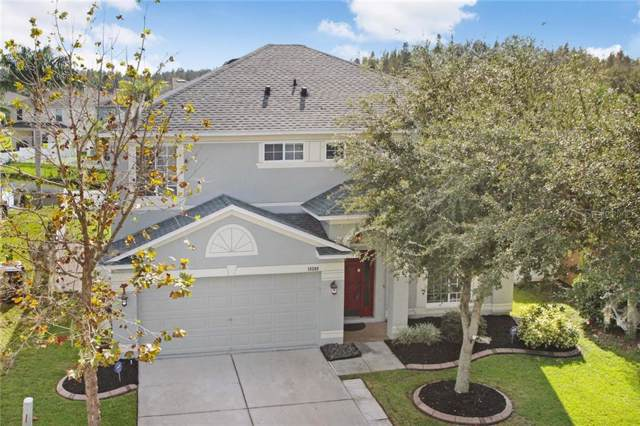 18209 Sandy Pointe Drive, Tampa, FL 33647 (MLS #T3205557) :: Cartwright Realty