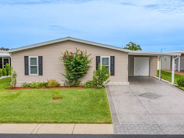 37527 Gill Avenue, Zephyrhills, FL 33541 (MLS #T3205562) :: The Robertson Real Estate Group