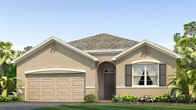 16445 Little Garden Drive, Wimauma, FL 33598 (MLS #T3205619) :: Cartwright Realty