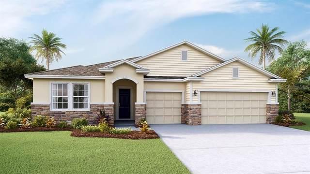 5028 Jagged Cloud Drive, Wimauma, FL 33598 (MLS #T3205624) :: Cartwright Realty