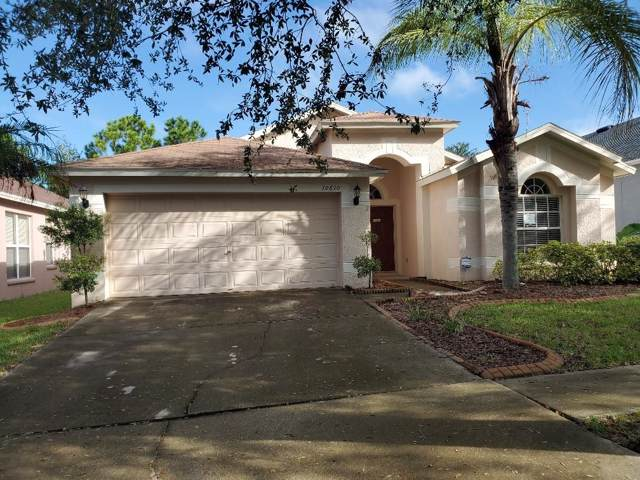 10610 Little Bend Lane, Riverview, FL 33579 (MLS #T3205625) :: NewHomePrograms.com LLC
