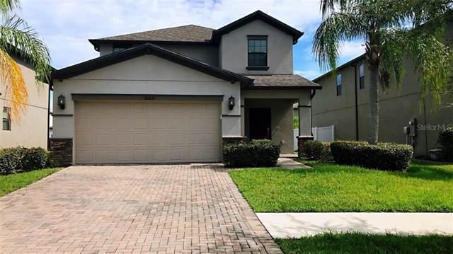 20031 Date Palm Way, Tampa, FL 33647 (MLS #T3205638) :: Team Bohannon Keller Williams, Tampa Properties