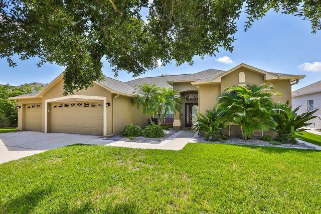 9258 Estate Cove Circle, Riverview, FL 33578 (MLS #T3205656) :: Burwell Real Estate
