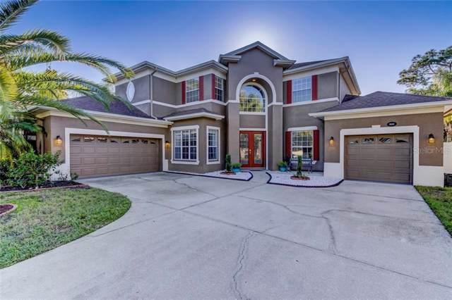 16106 Nikki Lane, Odessa, FL 33556 (MLS #T3205680) :: Kendrick Realty Inc
