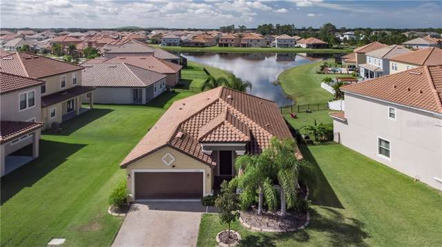 11933 Frost Aster Drive, Riverview, FL 33579 (MLS #T3205710) :: Burwell Real Estate