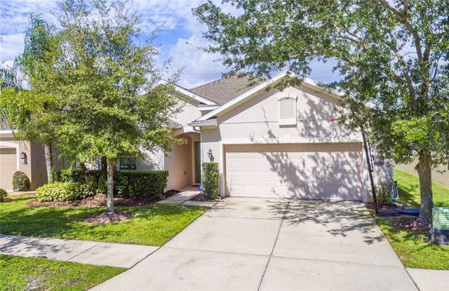 7973 Camden Woods Drive, Tampa, FL 33619 (MLS #T3205714) :: Griffin Group