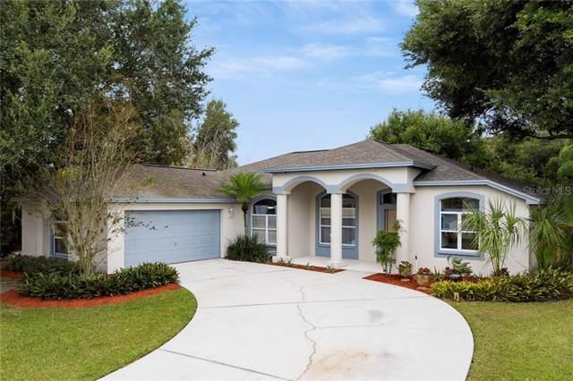 4001 Saddle Ridge Street, Valrico, FL 33596 (MLS #T3205722) :: Team Bohannon Keller Williams, Tampa Properties