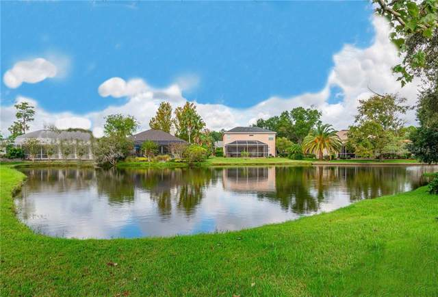 414 Pinewood Drive, Oldsmar, FL 34677 (MLS #T3205734) :: Team TLC | Mihara & Associates