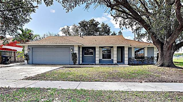 2208 Turmeric Avenue, Orlando, FL 32837 (MLS #T3205786) :: Armel Real Estate