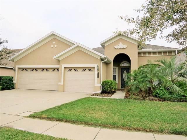 8335 Old Town Drive, Tampa, FL 33647 (MLS #T3205831) :: Team Bohannon Keller Williams, Tampa Properties