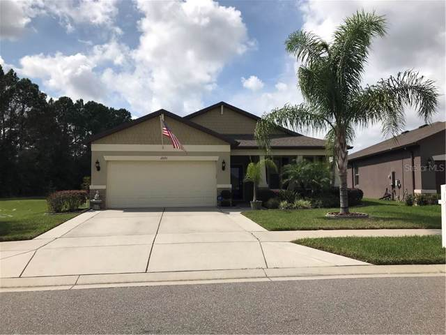 2091 Trillium Boulevard, Brooksville, FL 34604 (MLS #T3205847) :: Mark and Joni Coulter | Better Homes and Gardens