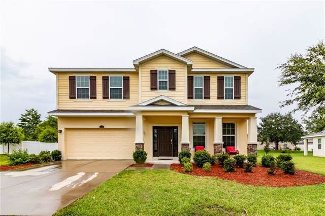 3769 Windance Avenue, Spring Hill, FL 34609 (MLS #T3205876) :: Mark and Joni Coulter | Better Homes and Gardens