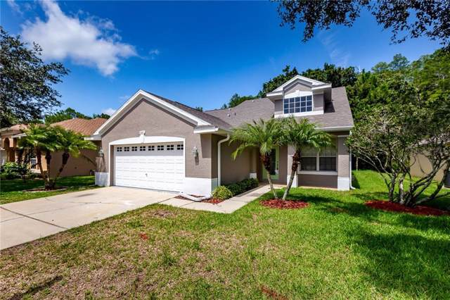 4841 Ridgemoor Circle, Palm Harbor, FL 34685 (MLS #T3205934) :: Mark and Joni Coulter | Better Homes and Gardens