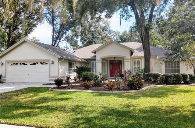 711 Stratfield Drive, Lutz, FL 33549 (MLS #T3205943) :: Keller Williams Realty Peace River Partners