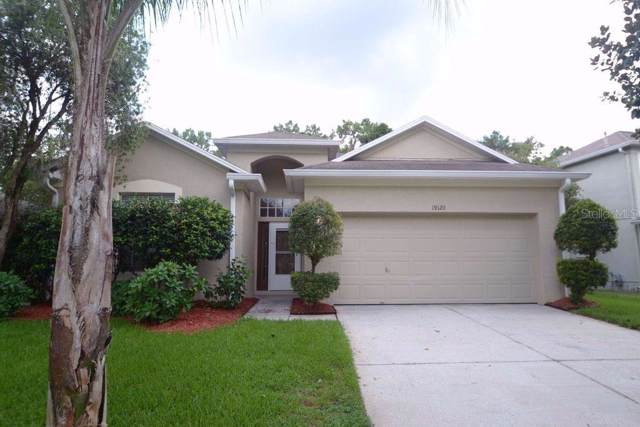 19120 Wood Sage Drive, Tampa, FL 33647 (MLS #T3205958) :: Team Bohannon Keller Williams, Tampa Properties