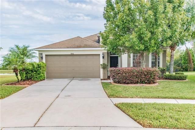 7643 Stoney Hill Drive, Wesley Chapel, FL 33545 (MLS #T3205982) :: Premier Home Experts