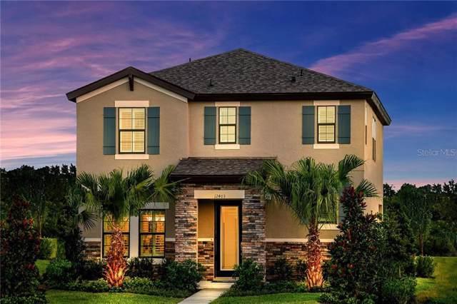12403 Triple Creek Boulevard, Riverview, FL 33579 (MLS #T3206013) :: Keller Williams Realty Peace River Partners