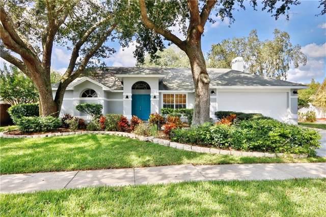 15122 Craggy Cliff Street, Tampa, FL 33625 (MLS #T3206014) :: Premium Properties Real Estate Services