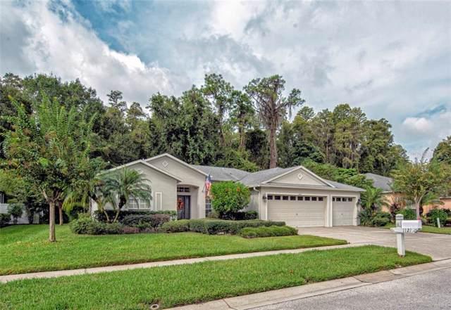 1121 Wyndham Lakes Drive, Odessa, FL 33556 (MLS #T3206051) :: Kendrick Realty Inc