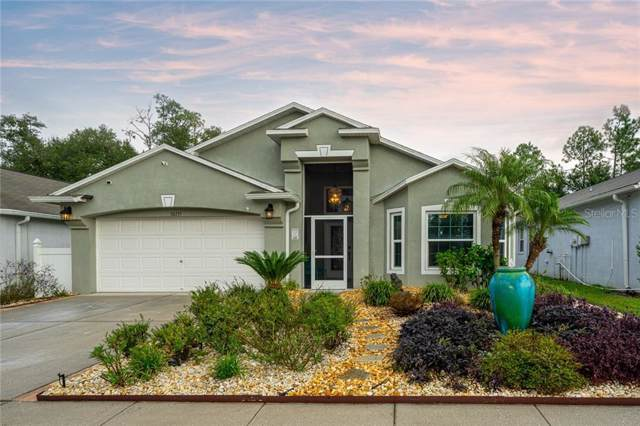 30735 Midtown Court, Wesley Chapel, FL 33545 (MLS #T3206087) :: Premier Home Experts