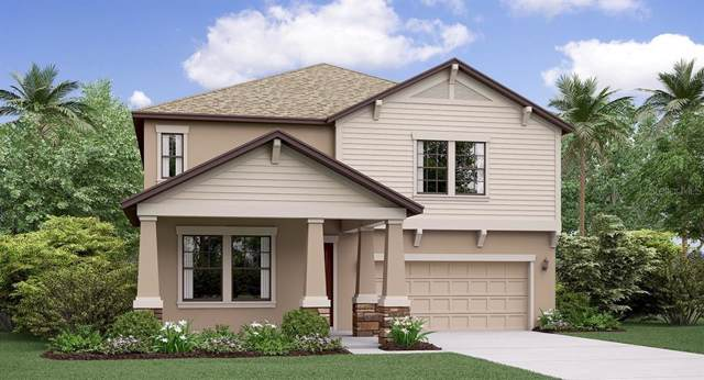 11835 Sunburst Marble Road, Riverview, FL 33579 (MLS #T3206090) :: Team TLC | Mihara & Associates