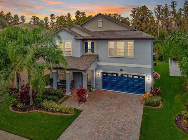 19354 Paddock View Drive, Tampa, FL 33647 (MLS #T3206107) :: Cartwright Realty