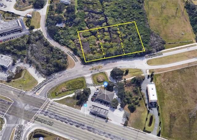 Lafayette Boulevard, Oldsmar, FL 34677 (MLS #T3206159) :: The Figueroa Team