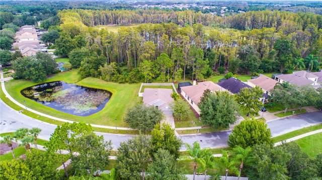 7718 Citrus Blossom Drive, Land O Lakes, FL 34637 (MLS #T3206163) :: The Brenda Wade Team