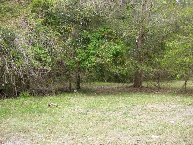 Powell, New Port Richey, FL 34654 (MLS #T3206185) :: Premier Home Experts