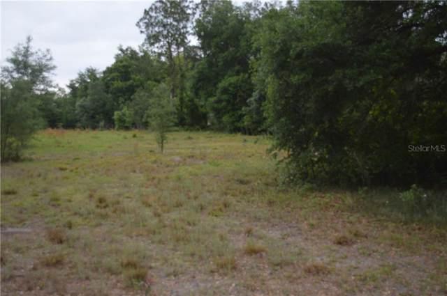 12130 & 12126 Rix Lane, Dade City, FL 33525 (MLS #T3206243) :: Bustamante Real Estate
