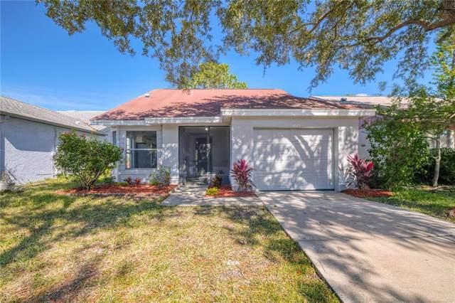 11625 Sunshine Pond Road, Tampa, FL 33635 (MLS #T3206290) :: Alpha Equity Team