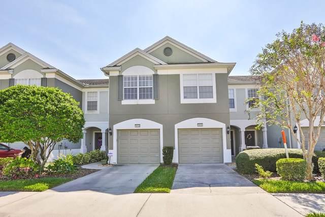 10153 Pink Palmata Court, Riverview, FL 33578 (MLS #T3206311) :: 54 Realty