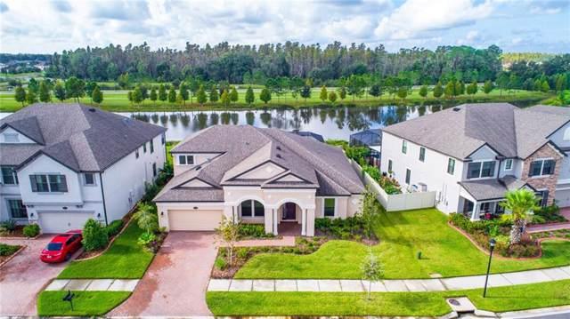 19426 Whispering Brook Drive, Tampa, FL 33647 (MLS #T3206321) :: Kendrick Realty Inc