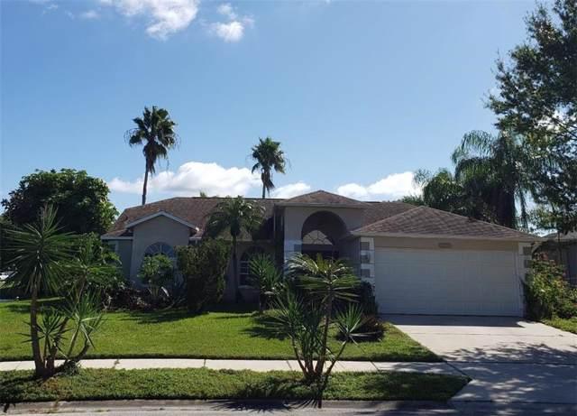 811 Christina Circle, Oldsmar, FL 34677 (MLS #T3206361) :: Gate Arty & the Group - Keller Williams Realty Smart