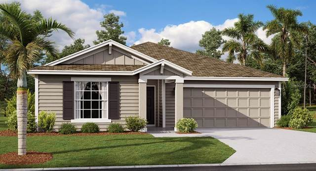 825 Gisele Court, Haines City, FL 33844 (MLS #T3206411) :: The Robertson Real Estate Group