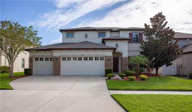 7223 Peregrina Loop, Wesley Chapel, FL 33545 (MLS #T3206440) :: Florida Real Estate Sellers at Keller Williams Realty