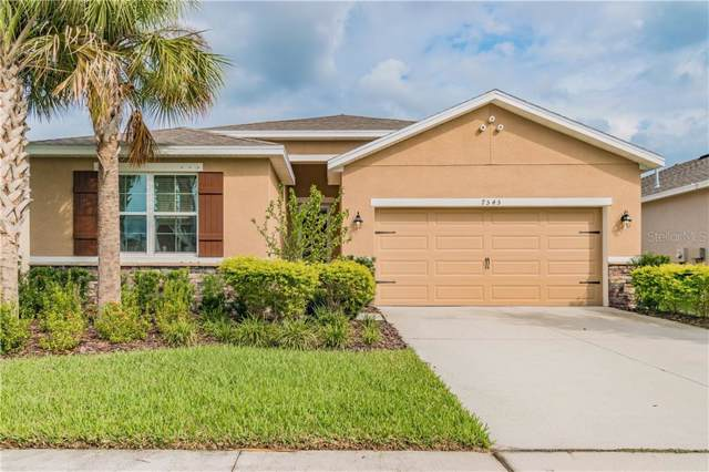 7545 Lantern Park Avenue, Apollo Beach, FL 33572 (MLS #T3206442) :: Kendrick Realty Inc