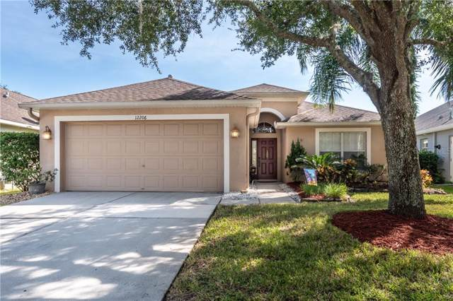 12206 Coldstream Lane, Tampa, FL 33626 (MLS #T3206533) :: Griffin Group