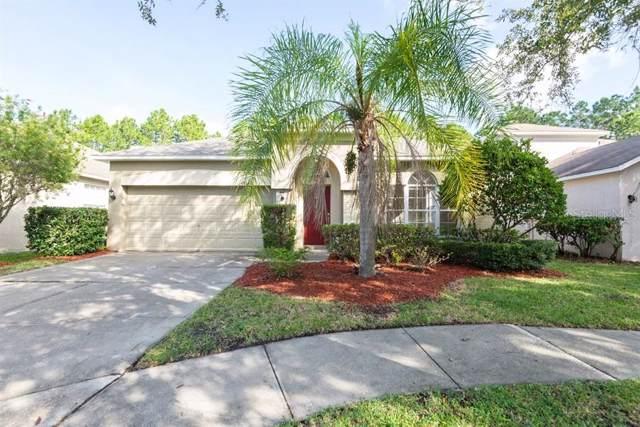 19142 Chemille Drive, Lutz, FL 33558 (MLS #T3206612) :: Andrew Cherry & Company