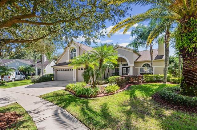 10160 Whisper Pointe Drive, Tampa, FL 33647 (MLS #T3206667) :: Cartwright Realty