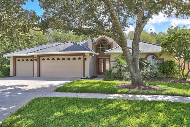 5502 Avenue Du Soleil, Lutz, FL 33558 (MLS #T3206701) :: Rabell Realty Group