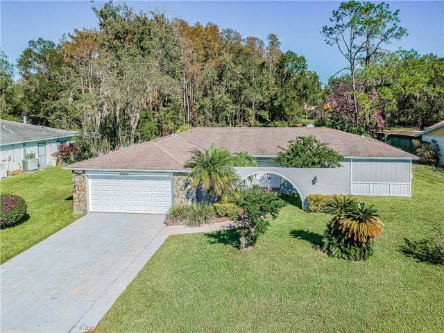 23533 Sierra Road, Land O Lakes, FL 34639 (MLS #T3206717) :: RE/MAX CHAMPIONS