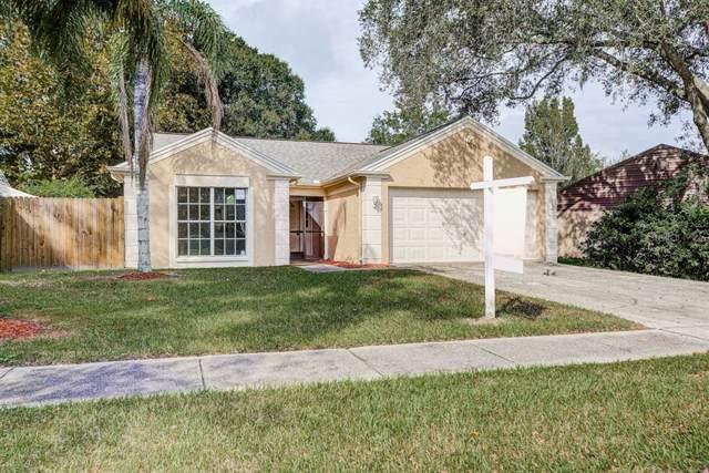1607 Baker Road, Lutz, FL 33559 (MLS #T3206737) :: The Duncan Duo Team