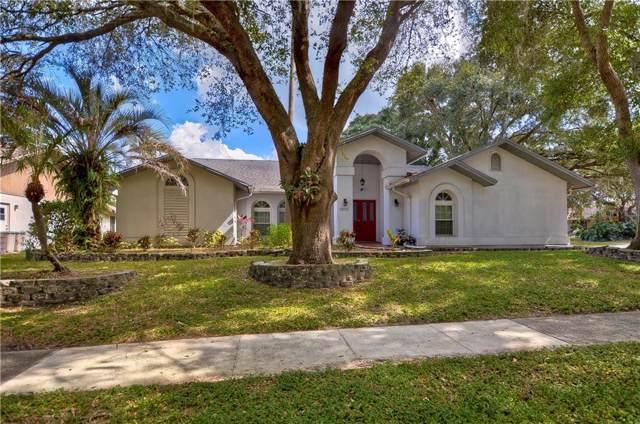 2512 Arborwood Drive, Valrico, FL 33596 (MLS #T3206784) :: Team Bohannon Keller Williams, Tampa Properties
