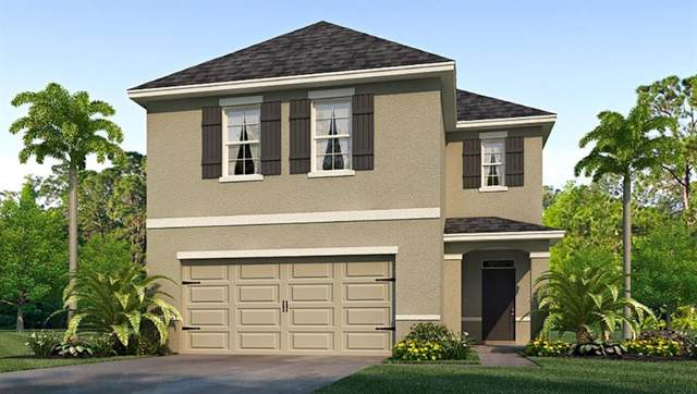 8191 Pelican Reed Circle, Wesley Chapel, FL 33545 (MLS #T3206877) :: The Duncan Duo Team