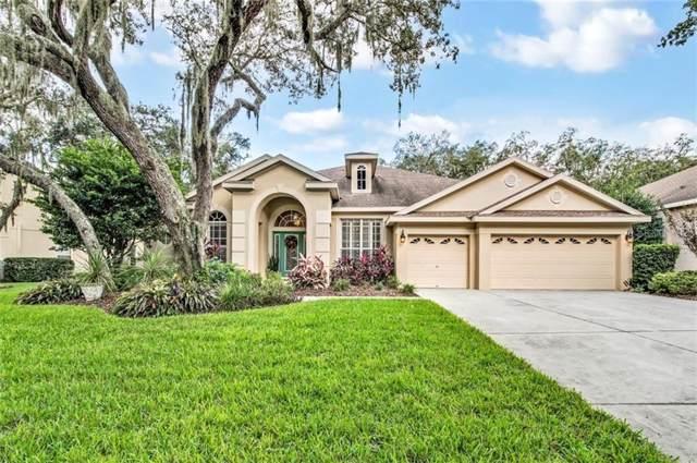 15914 Sorawater Drive, Lithia, FL 33547 (MLS #T3206951) :: Florida Real Estate Sellers at Keller Williams Realty