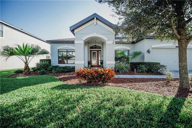 8234 Bluevine Sky Drive, Land O Lakes, FL 34637 (MLS #T3207050) :: Rabell Realty Group