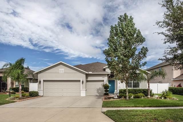 12745 Drakefield Drive, Spring Hill, FL 34610 (MLS #T3207131) :: Cartwright Realty