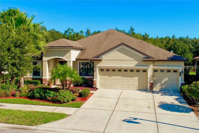 7929 Hampton Lake Drive, Tampa, FL 33647 (MLS #T3207235) :: Cartwright Realty